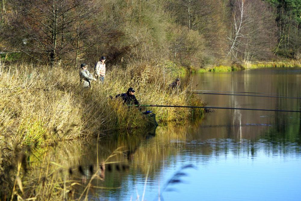 Łowienie z opadu.