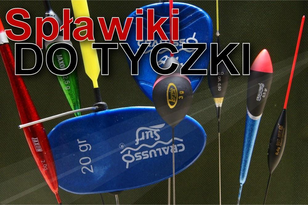 www.leszcz.pl - Spławiki do tyczki - zasady właściwego wyboru