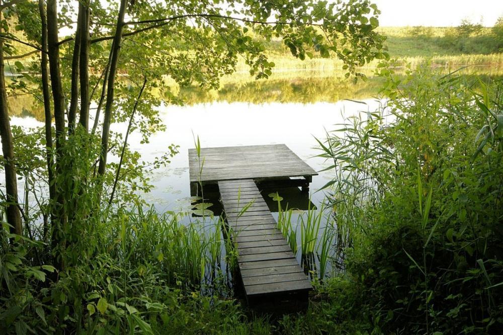 Drewniany pomost wędkarski